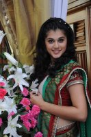 Tapsee_new (8)
